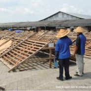 SF Resources: Flying the flag for Indonesian wood in flooring and decking